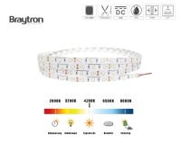 LED Stripe ECOLINE 14,4 W   IP20   12V   5m
