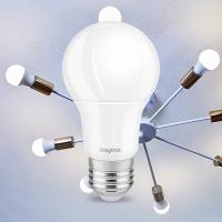 10er Sparpack | LED Leuchtmittel E27 5 Watt | A60 | 400 Lumen kaltweiß (6400 K)